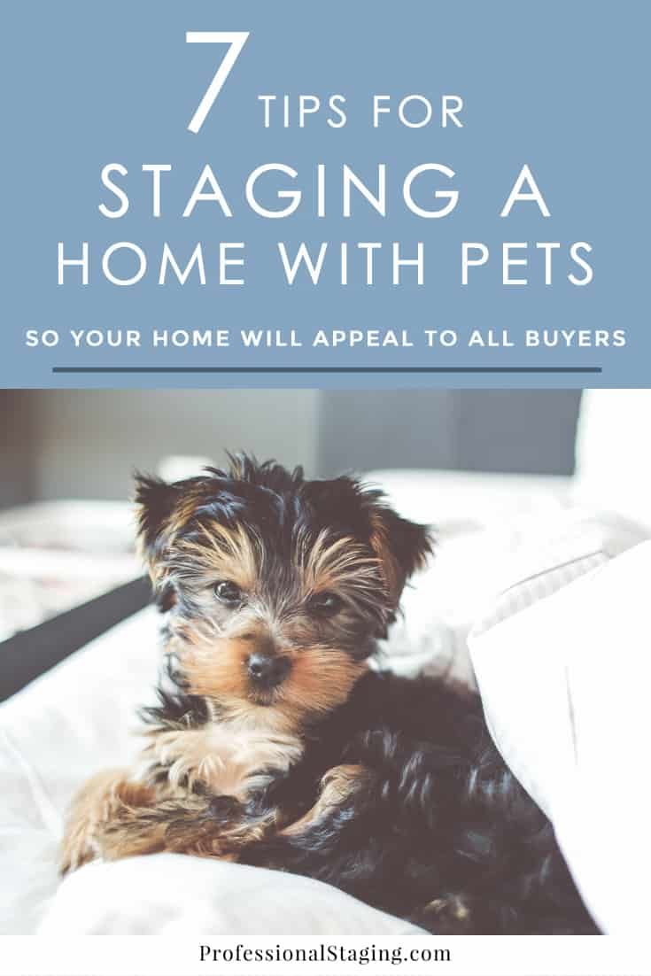 Pets are an amazing part of our lives, but unfortunately many home buyers see signs of pets as turn-offs in a listing. here are 7 tips to help your home appeal to all buyers. | ProfessionalStaging.com #realestate #homeselling #staging